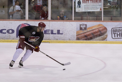 Phoenix Coyotes Prospects Camp 11 July 2013 -004