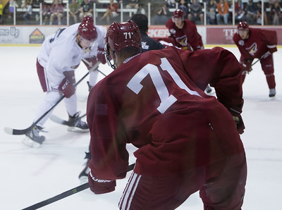 Phoenix Coyotes Prospects Camp 11 July 2013 -016