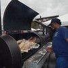 KENTON BROOKS/Muskogee Phoenix<br /> Muskogee's Don Perkins, a member of the Gooseneck Bend Volunteer Fire Department, puts in the smoker a whole hog he's cooking for the Muskogee Exchange Club Chili & BBQ Cook-Off.