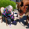KENTON BROOKS/Muskogee Phoenix<br /> Velma Keener holds out popcorn for Sterling to eat out of her hand during a Pet Therapy Day on Wednesday at Pleasant Valley Health Care Center. Keener and other residents got to be outside and enjoy seeing, feeding and petting horses and dogs after being kept in their rooms because of the COVID-19 pandemic. The animals were brought to the Illinois Street nursing home by Paula Seck and Kathy Gosselin of Complete Home Health and Complete Hospice.