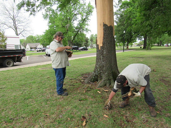 Staff photo by Cathy Spaulding<br /> Muskogee Parks and Recreation workers Ken Yates, left, and Clay Thompson pick up branches and bark.