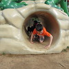 Staff photo by Cathy Spaulding<br /> Zander Lloyd sweeps the tunnel under the Dr. Martin Luther King Jr.<br /> Community Center's alligator play structure. The center seeks to raise money for a safer playground.