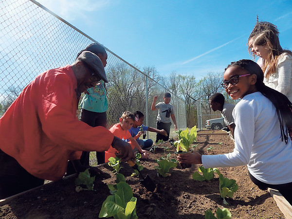 """D. E. SMOOT/Muskogee Phoenix<br /> Master Gardener Cedric Johnson, left, teaches Sarayne Leffall, 9, right, and other participants of the Dr. Martin Luther King Jr. Community Center's after-school program how to transplant vegetable seedlings at the facility's community garden. Whole Kids Foundation awarded the after-school program a $2,000 grant in support of the center's edible educational garden at the center. """"The community garden provides a wonderful educational opportunity for our students,"""" said Laura Hazen, program manager at Neighbors Building Neighborhoods, which oversees King Center programs. """"This project helps them learn not only about gardening, but about healthy nutrition, math, science and sustainability."""" Johnson, a retired educator serves, as the volunteer garden coordinator. Other students who took part planting the spring salad garden and other vegetables include Ciara Edwards, 9, Kourie Tate, 8, Eden Dennis, 10, Sharya Walker, 10, and Tucker Perkins, 12."""