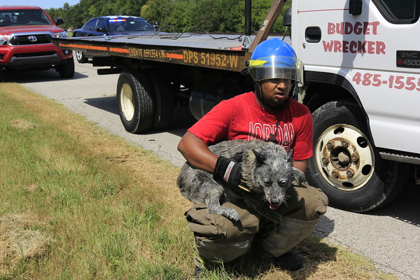 Staff photo by Harrison Grimwood<br /> A Wagoner firefighter holds a frightened dog, recently freed from the wreckage of a rear-ended F-350 on U.S. 69, close Thursday while waiting for its owners to come to take care of it.