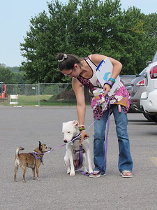Nicole Six gives her Chihuahua, Chi Chi a command while her American pit bull terrier, Star, watches during an outing at Civitan Park.