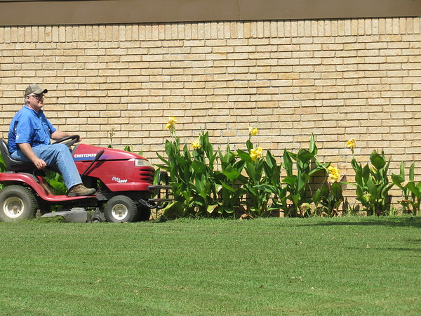 CATHY SPAULDING/Muskogee Phoenix<br /> Lynn Simmons passes his tall yellow flowers as he mows his corner lot in south Muskogee on Thursday. Cooler temperatures and a chance of showers or storms are expected in Muskogee on Friday and Saturday, according to the AccuWeather website.