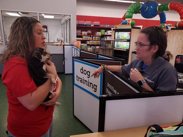 CHESLEY OXENDINE/Muskogee Phoenix<br /> Fur Babies Adoption and Rescue volunteer Natasha Benge holds one of 17 recently rescued puppies while talking with fellow volunteer and Petco dog trainer Nicole Six.
