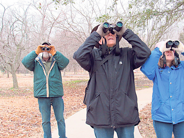 CATHY SPAULDING/Muskogee Phoenix<br /> Bird counters, from left, Tom Alford, Chris McGreer and Jessica McGreer gaze through binoculars while counting birds Friday at Honor Heights Park. Honor Heights Park Naturalist Tom Roberts said about 300 birds, representing 21 species were counted. Roberts said cool weather might have resulted in a comparatively low count this year. Counters walked through the park's arboretum and around to the south. Friday's count was part of a national effort sponsored by the Cornell Lab of Ornithology and the National Audubon Society.