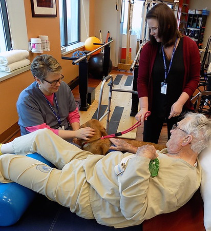 Staff photo by Mike Elswick<br /> Clinton Warnok gets a visit from Honor, the new therapy dog stationed at the Jack C. Montgomery VA Medical Center, as Cindy Redfern-Wiegel, physical therapist, left, and Terri Woodworth, social worker and Honor's handler, look on.