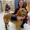 Staff photo by Mike Elswick<br /> The Jack C. Montgomery VA Medical Center's new facility dog, Honor, has a prosthetic leg from a disability she was born with. Honor is seen with her handler, Terri Woodworth, who said Honor's disability prevents her from being a normal service dog.