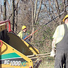CATHY SPAULDING/Muskogee Phoenix<br /> One Oklahoma Department of Transportation worker feeds fallen tree limbs into a chipper while another worker trims overhead branches. Oklahoma Department of Transportation workers spent Wednesday clearing the highway right of way along U.S. 64 south of Muskogee. Workers want the area clear in time for spring mowing, an ODOT worker said.