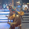 VON CASTOR/Special to the Phoenix<br /> Local bull rider Zane Cook rides in the third round of the Bull Riders Inc. National Finals at the Muskogee Civic Center Saturday night. Creek Young won the championship, Cook was fifth.