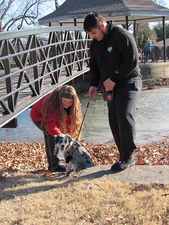 Staff photo by Cathy Spaulding<br /> Kenzie Davis pets Berkely after she and Jesus Aguilar coax the miniature Australian shepherd away from the semi-frozen Spaulding Park pond Friday afternoon. Ice is melting at the Spaulding Park pond, and other area ponds. The melt should continue as temperatures remain above freezing through the weekend. According to the AccuWeather website, highs should reach upper 40s Saturday and Sunday.