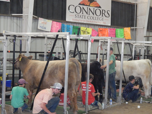 Staff photo by Cathy Spaulding<br /> Motivational posters line barn walls at Connors State College during its annual Be a Champ Show Cattle and Lamb Camp.