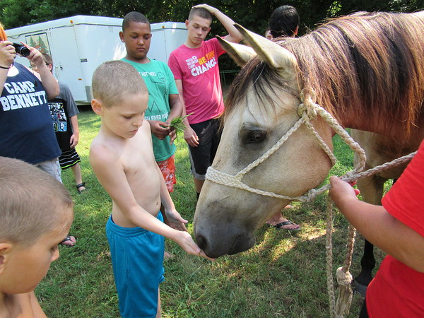 CATHY SPAULDING/Muskogee Phoenix<br /> Camper Dylan Sumners remembers to hold his hand open while feeding Prince, a horse who visited Camp Bennett on Thursday. Muskogee Public Schools hosts the camp for MPS students with special needs.