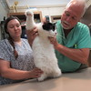 Staff photo by Cathy Spaulding<br /> Veterinary technician Jamie Tribble calms Bandit as Dr. Larry Hamilton examines him. Hamilton said a thorough cat examination includes checking under the legs.