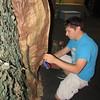 "Staff photo by Cathy Spaulding<br /> Sterling Spinks glues some paper ""bark"" for a tree used in the Summer Youth Theatre production of ""Disney's Peter Pan Jr."""