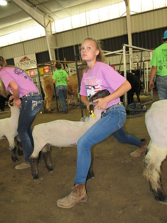 CATHY SPAULDING/Muskogee Phoenix<br /> Olivia Valliere of Breckenridge, Michigan, stares in concentration as she braces her lamb during Be A Champ Show Cattle and Lamb Camp. Participants came from 14 states to learn showmanship and livestock grooming. A story about the camp is on the Schools page behind Sports.