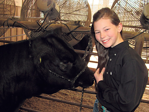 Staff photo by Cathy Spaulding<br /> Kennedy Lockhart stands by Chanel, a commercial heifer. She said show cattle are kept cool inside their stalls.
