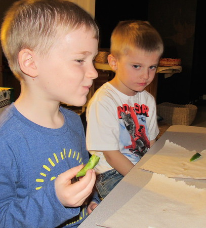 Staff photo by Cathy Spaulding<br /> Early Childhood Center pupil Landen Loftin, left, ponders the taste of a green bell pepper while classmate Keegan Willhite hesitates. ECC student test different fruits and vegetables three times a week.