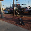 CATHY SPAULDING/Muskogee Phoenix<br /> A Chevrolet Monte Carlo is loaded onto a wrecker at the scene of a collision at Main Street and Okmulgee Avenue around 7 p.m. Friday.