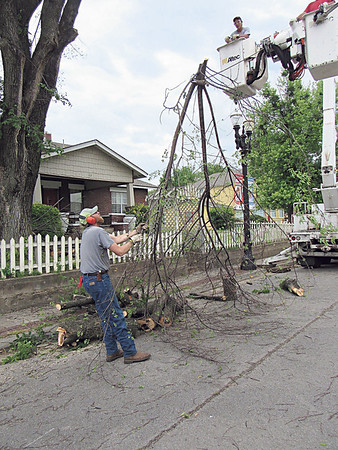 CATHY SPAULDING/Muskogee Phoenix<br /> Workers with Diebold Tree Service ease a giant tree limb down after trimming a tree on South Lee Street. Workers spent Thursday afternoon working on the massive tree.