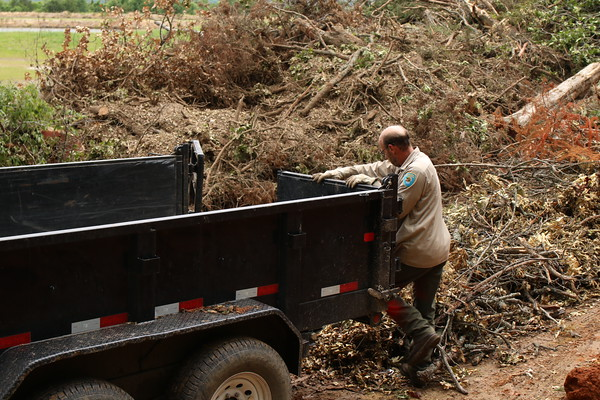 Staff photo by Harrison Grimwood Oklahoma State Park employee Tony Pendergraft clears another load of debris from Greenleaf State Park out of a trailer bed.