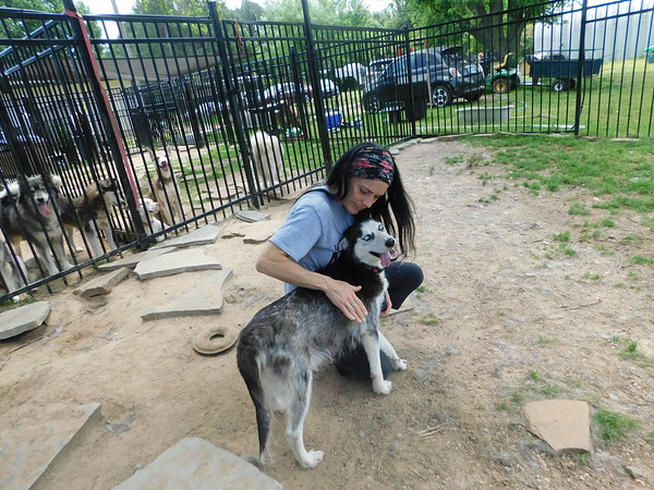 KENTON BROOKS/Muskogee Phoenix Jenny Dietsch hugs 3-year-old husky Ambria inside the Husky Halfway House she opened recently in Eufaula. Dietsch is taking care of more than 100 huskies at the nonprofit rescue she opened in early 2019. She's planning to open Eufaula Animal Welfare, a shelter and dog park. Dietsch moved with her husband and two children from California to start the rescue.