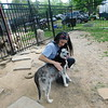 KENTON BROOKS/Muskogee Phoenix<br /> Jenny Dietsch hugs 3-year-old husky Ambria inside the Husky Halfway House she opened recently in Eufaula. Dietsch is taking care of more than 100 huskies at the nonprofit rescue she opened in early 2019. She's planning to open Eufaula Animal Welfare, a shelter and dog park. Dietsch moved with her husband and two children from California to start the rescue.