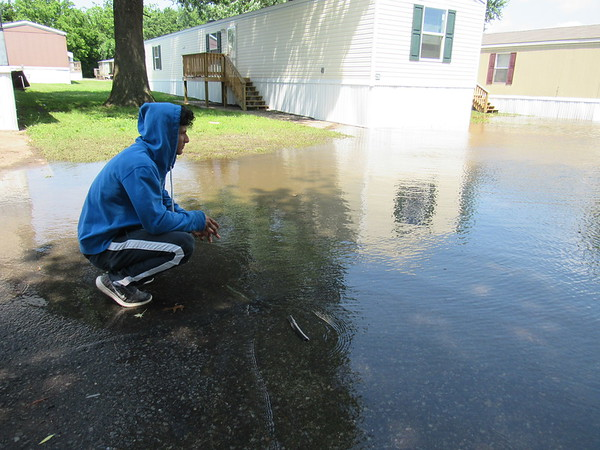 CATHY SPAULDING/Muskogee Phoenix<br /> Fernando Castro studies flood water covering streets in the Riverside Mobile Home Park. He said he and his family evacuated and got things out of their home.