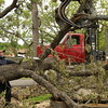 Staff photo by Harrison Grimwood<br /> John Blevins of Blevins Logging trims away a fallen tree at Greenleaf State Park, where an F1 tornado damaged many of the park's trees. Park employees counted more than 275 affected.