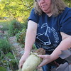 Staff photo by Cathy Spaulding<br /> Christina Kamp peels a loofa, which is used in bathing. She grows them in her home garden.