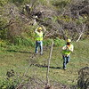 Staff photo by Cathy Spaulding<br /> OG&E workers pull an electric line across a dried creek southwest of Fort Gibson on Thursday.
