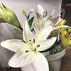 ANDREA CHANCELLOR/Special to the Phoenix<br /> Cut flowers are ordered from Oklahoma growers.