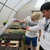 Staff photo by Cathy Spaulding<br /> Alice Robertson Junior High students Gabriel Cartlidge, left, and Paul Zeferino inspect water condensation under a seedling lid. A greenhouse, funded by the Cherokee Nation, allows ARJH students to grow and study plants in any kind of weather.