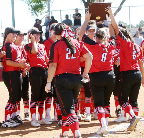 Phoenix special photo by John Hasler<br /> Hilldale Lady Hornets celebrate their Class 4A state tournament berth after winning regionals Saturday.