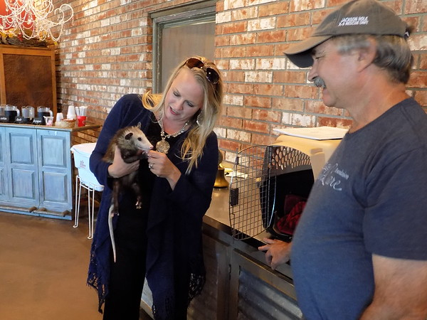 Staff photo by Mike Elswick<br /> Muskogee Exchange Club member Lisa Smith, left, cuddles an opossum that wild animal rescuer Gil Keener brought for a presentation for the club recently about animals he and other volunteers have  rescued over the years.