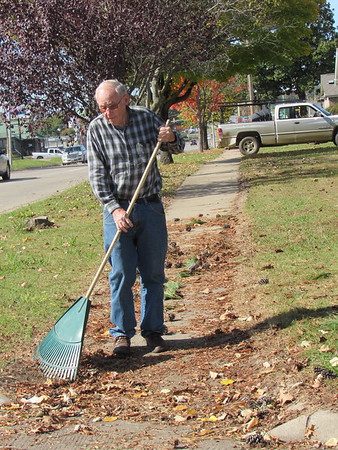 "CATHY SPAULDING/Muskogee Phoenix<br /> Bob Staton rakes pine cones and needles off his sidewalk Monday on West Okmulgee Avenue. Staton said raking pine cones and needles are ""one thing I don't like about pine trees."" He said his wife sometimes makes decorations with the pine cones."