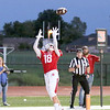 JOHN HASLER/Special to the Phoenix<br /> Fort Gibson's Dylan Mills hauls in a touchdown pass from Cole Mahaney during the Tigers' game against Berryhill on Friday at Leo Donahue Tiger Stadium. The Tigers lost in overtime 26-20.