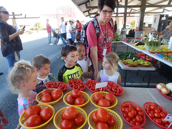 """KENTON BROOKS/Muskogee Phoenix<br /> Brandi O'Dell, a teacher for Muskogee's Early Childhood Center, talks to some of her students about tomatoes Wednesday at the Farmers Market. O'Dell brought her class to the market to teach them about """"gardening, the plants and the different things we eat. Our school also has Character education, and we're risk takers. That means we're trying new food, and they enjoy doing that."""" The students, from left, are Audrey Davidson, Jameson Purdin, Liam Grant, Jazlyn Chapman and Aunna Platt."""