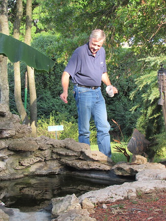 CATHY SPAULDING/Muskogee Phoenix<br /> Steve McCarter feeds fish in a manmade pond behind his house. He spent the summer fixing the fish pond.