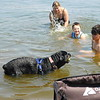 KENTON BROOKS/Muskogee Phoenix<br /> Michael Ellis, far right, and his brother Zachary along with Ashlyn Ellis of Tahlequah play with their dog Harley in Lake Fort Gibson at Sequoyah State Park on Monday.