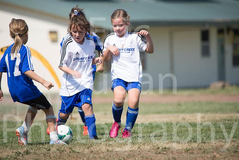 Phoenix vs Cheetah Soccer-69