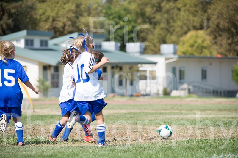Phoenix vs Cheetah Soccer-61