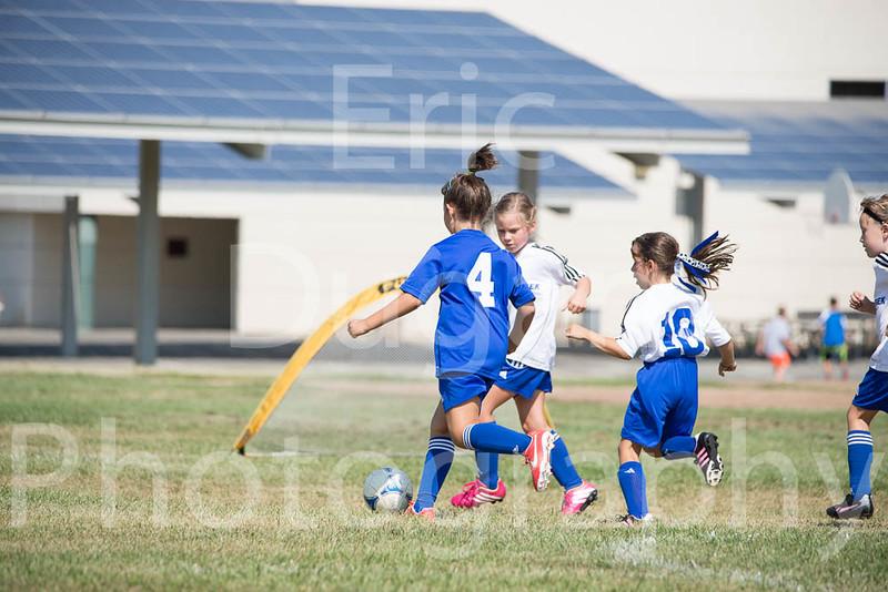 Phoenix vs Cheetah Soccer-35