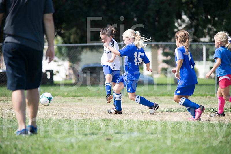 Phoenix vs Cheetah Soccer-42