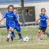 Phoenix vs Cheetah Soccer-192