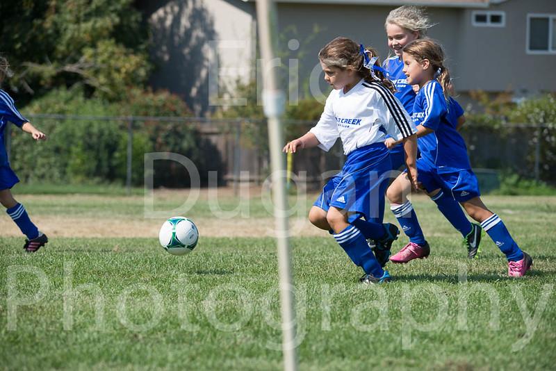 Phoenix vs Cheetah Soccer-22