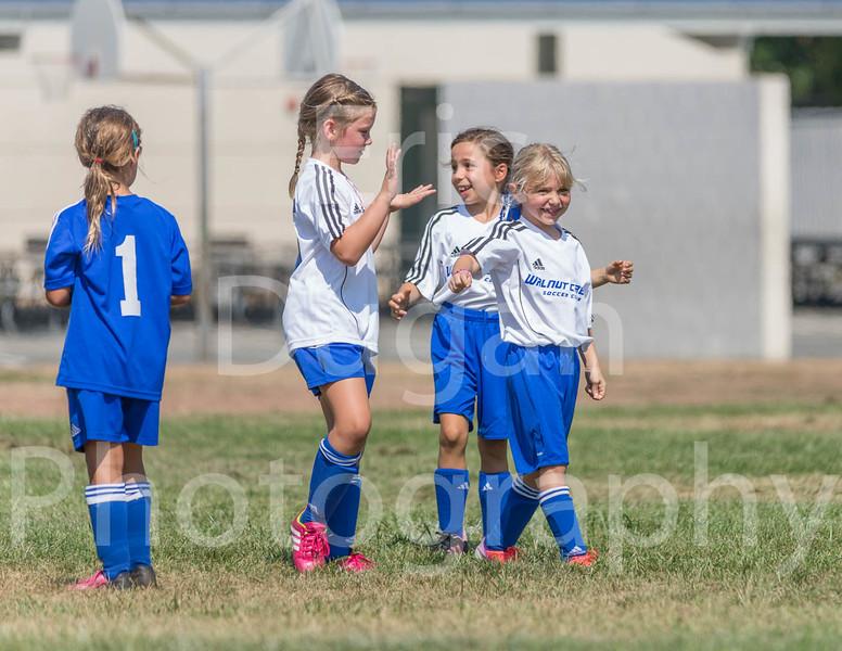 Phoenix vs Cheetah Soccer-147