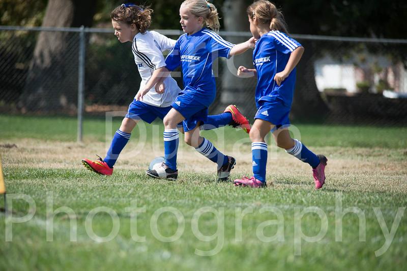 Phoenix vs Cheetah Soccer-45